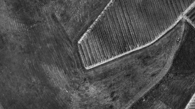 Aerofotogrammetria georeferenziata